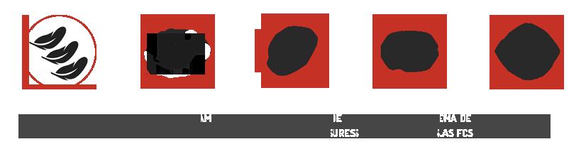 Iconos Opcion gris